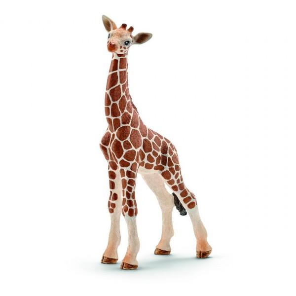 Giraffenbaby - Schleich (14751) Wild Life