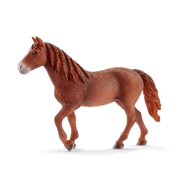 Morgan Horse Stute (Schleich 13870)