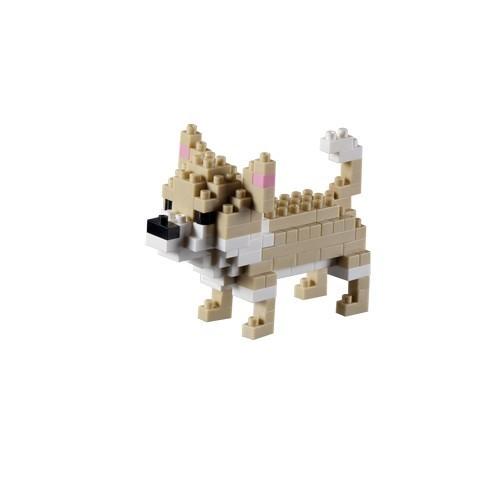 BRIXIES - Chihuahua (200.175)